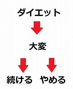 ダイエットの図式