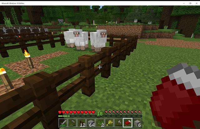 Minecraft_ Windows 10 Edition 2017_02_18 18_03_54